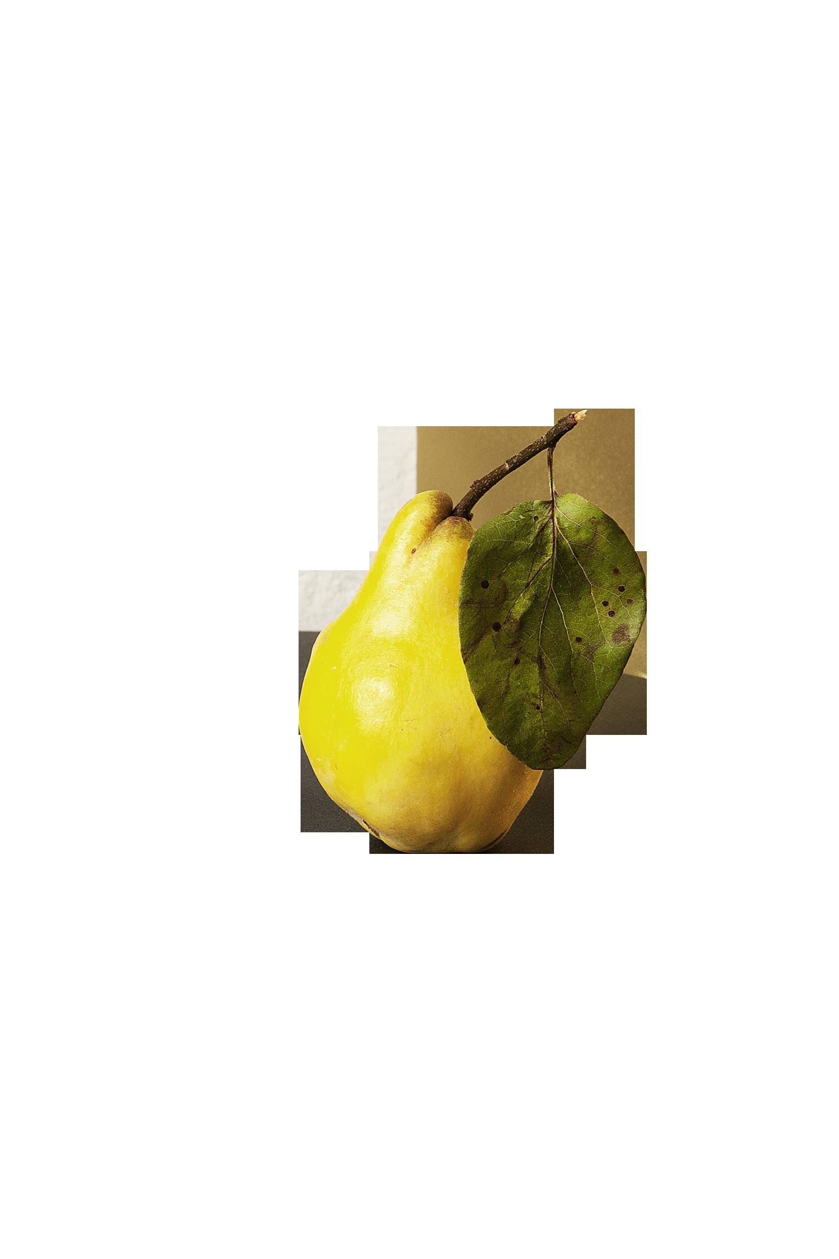 pear-690596_Clip