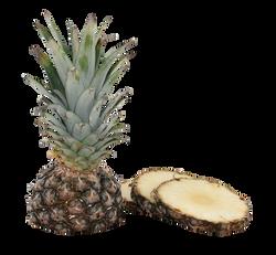pineapple-627290_Clip