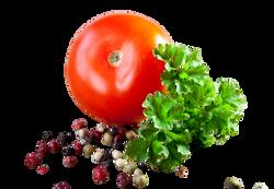 tomato-663097_Clip