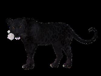 leopard-1984125__340.png