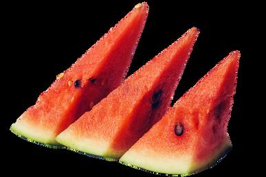 melon-2735367_960_720.png