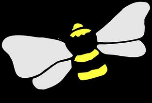 bee-45797__340.png