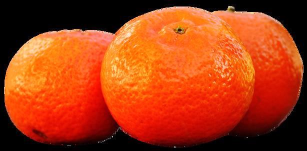 Mandarins-Tangerine-PNG-image.png