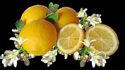 lemons-3334763_960_720.png