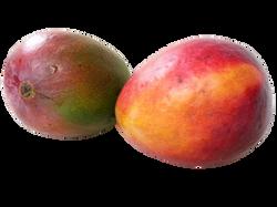 mango-164572_Clip