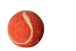 tennis-ball-578044_Clip