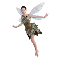 fairy-2730563__340.png
