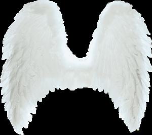 Wings-png-46