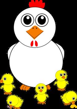 Chicken_003_and_Chicks_Cartoon