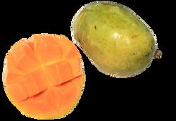 mango-896189_Clip - Copy