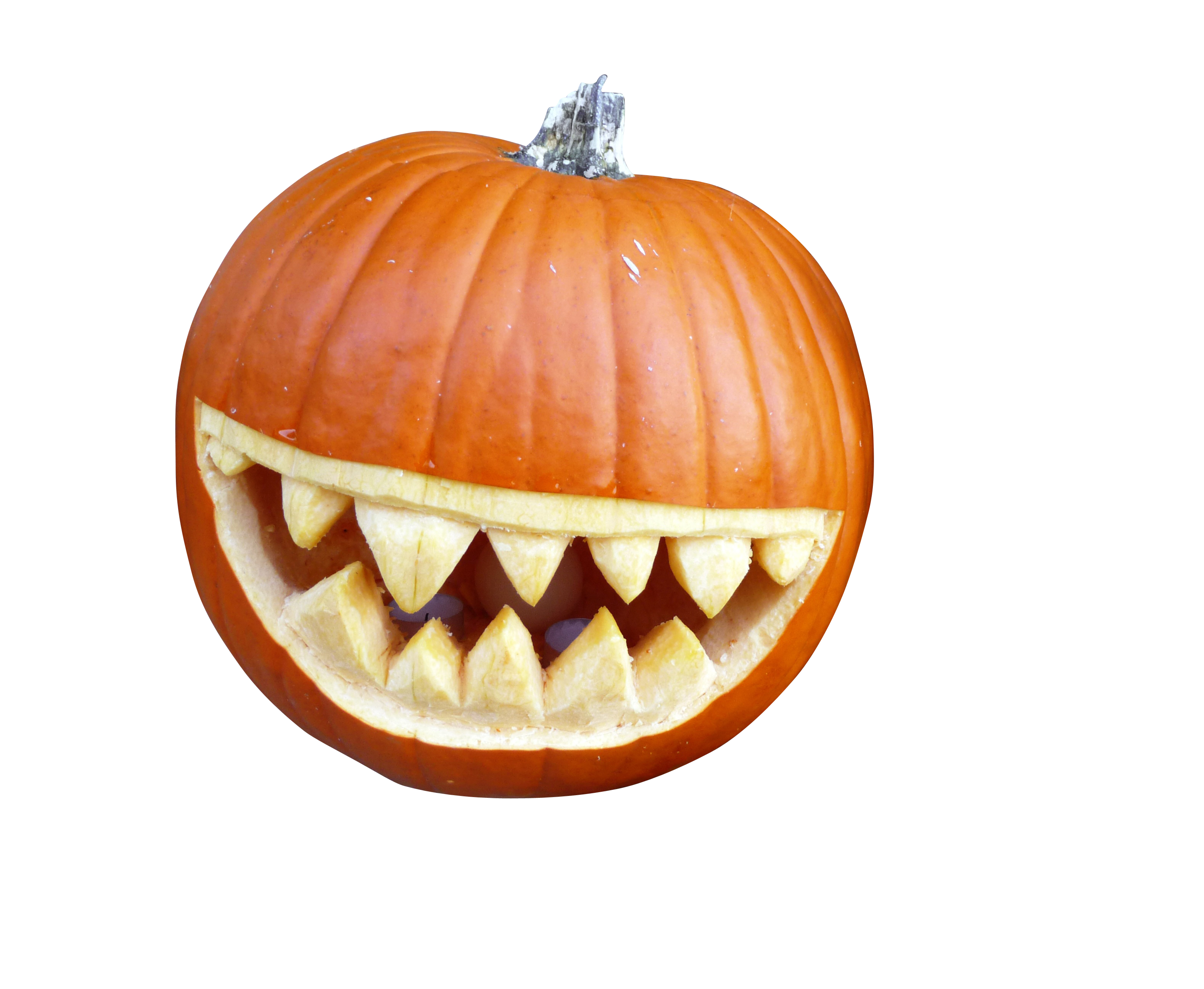 pumpkin-962708_Clip