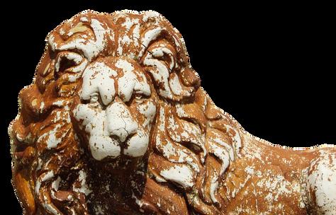 lion-2410567_960_720.png