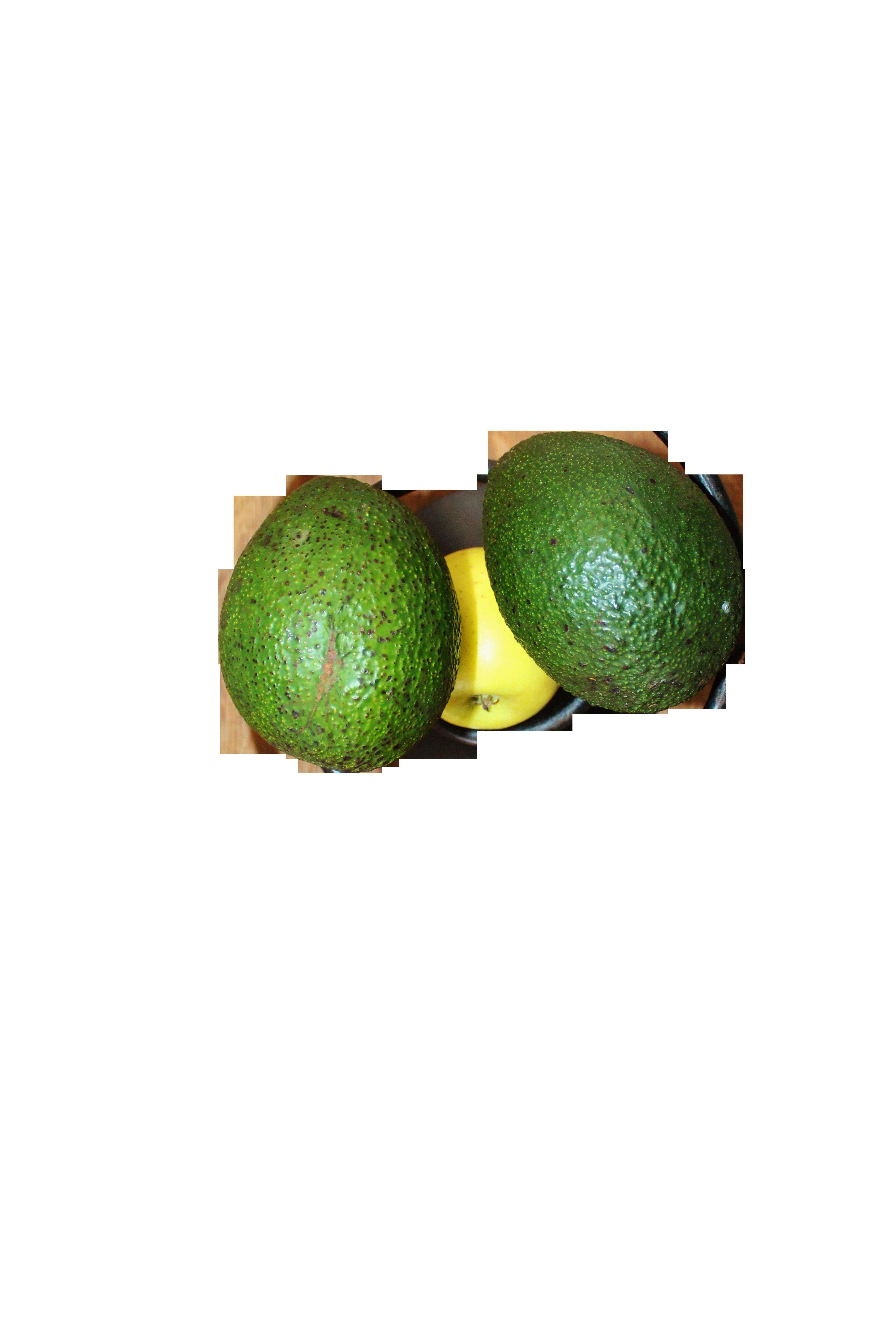 fruit-bowl-483811_Clip