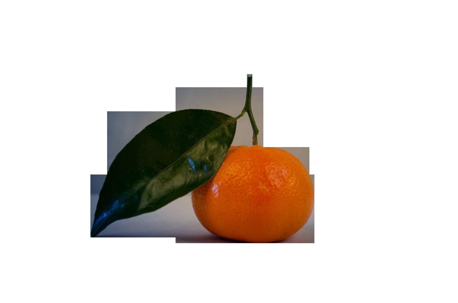 mandarin-315500_Clip
