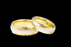 ring-1775_Clip