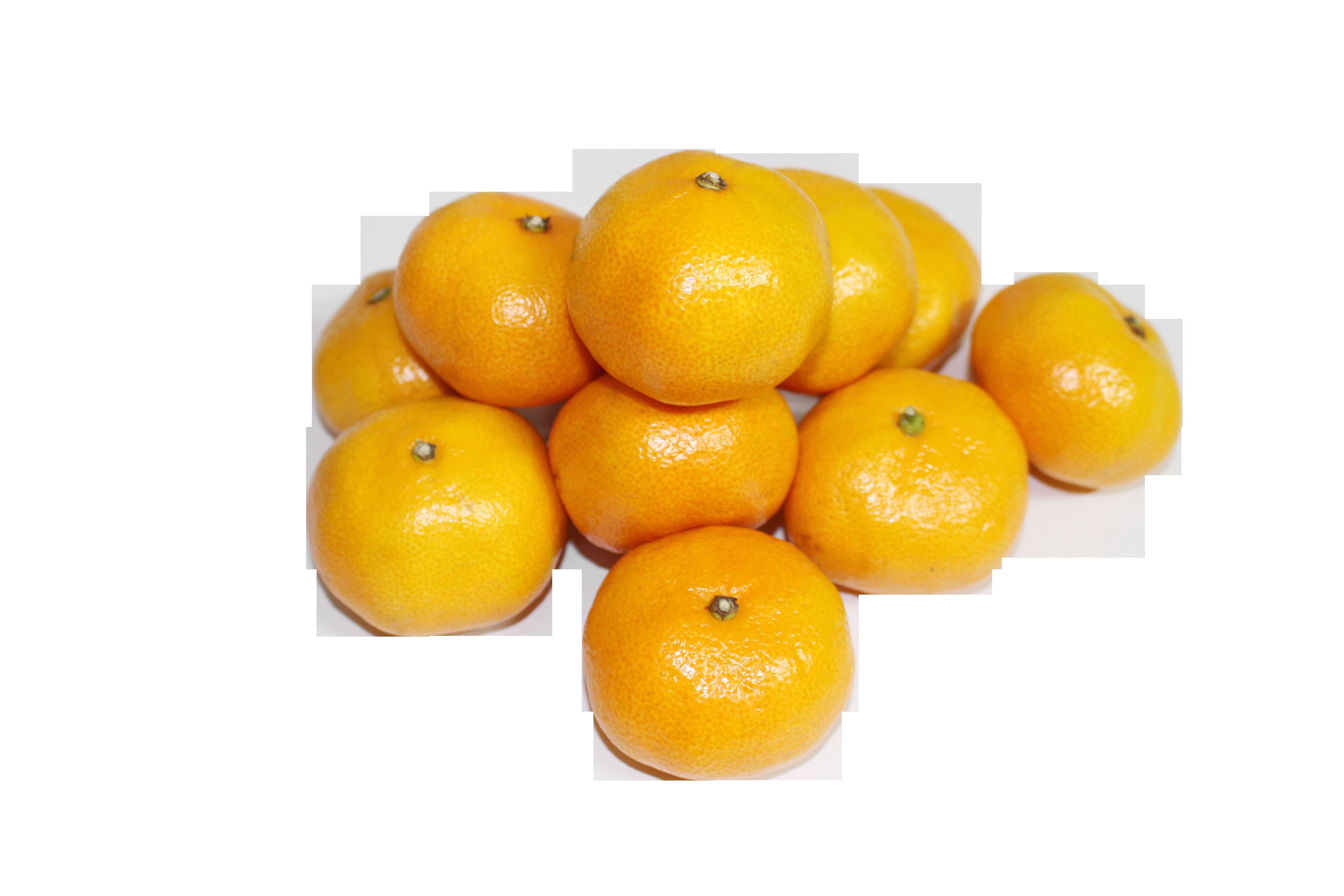 tangerine-507898_Clip