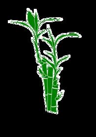 Bamboo (19).png