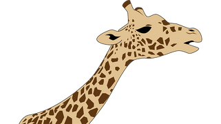 giraffe-2862882__340.png