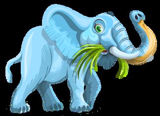 PNGPIX-COM-Elephant-Vector-PNG-Image.png