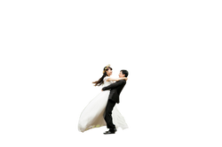 wedding-443600_Clip