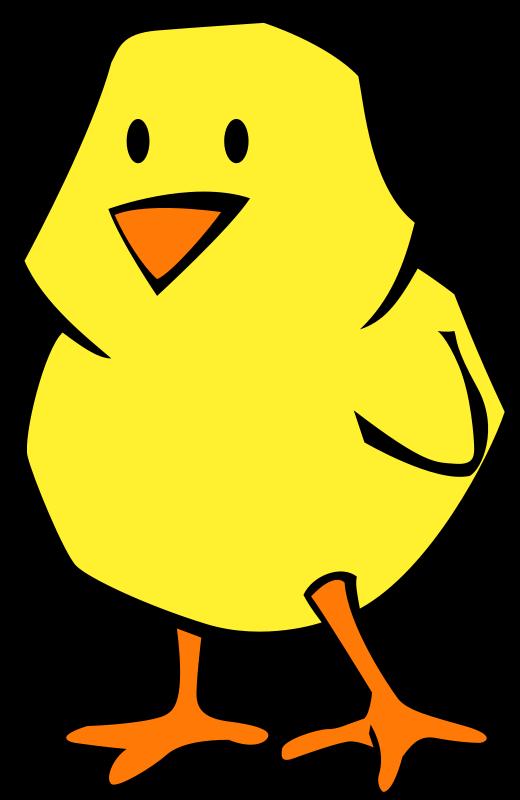Chick_Spring_2010-flat
