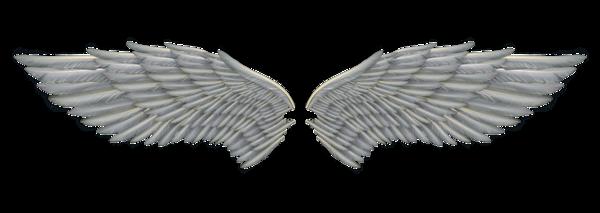 Wings-png-18