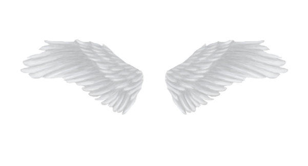 Wing-png-04