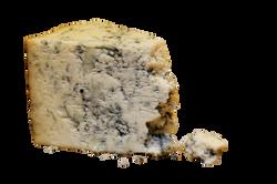 mold-cheese-933309_Clip
