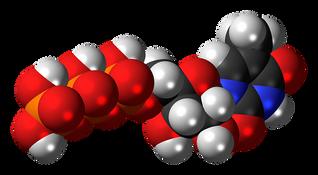 methyluridine-867398__340.png