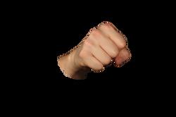 fist-1148029_Clip