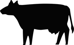 Boort_Cow_Silhouette