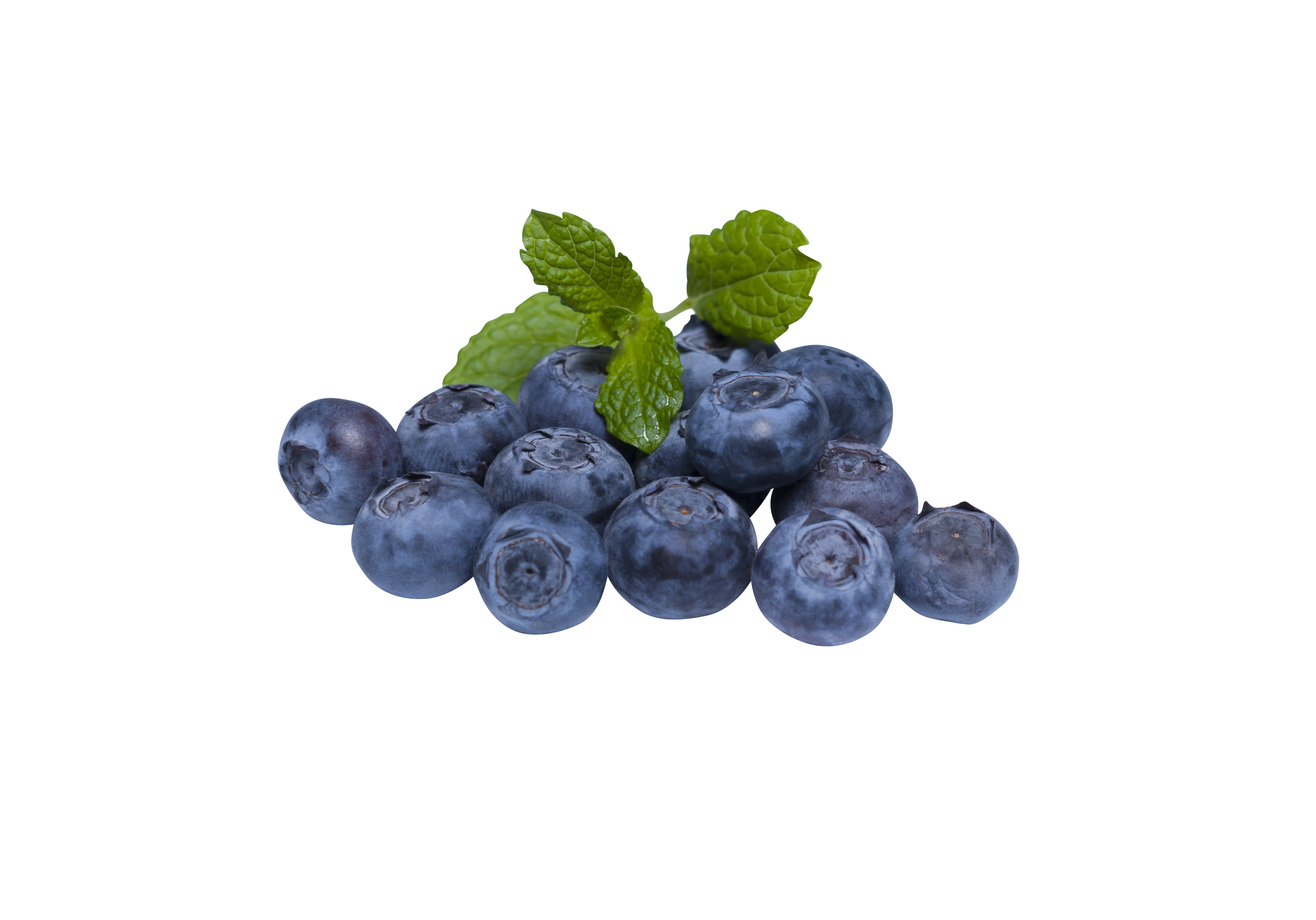 blueberry-873784_Clip