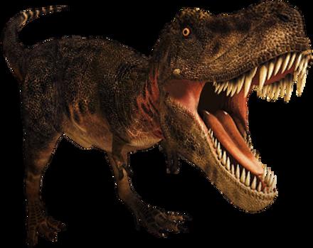 Free Pngs Dinosaur Png Images Green dinosaur illustration, tyrannosaurus dinosaur spinosaurus cartoon, cartoon dinosaur transparent background png clipart. free pngs dinosaur png images