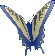butterfly-48337__340.png