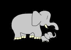 TatsuoUeda_baby_elephant