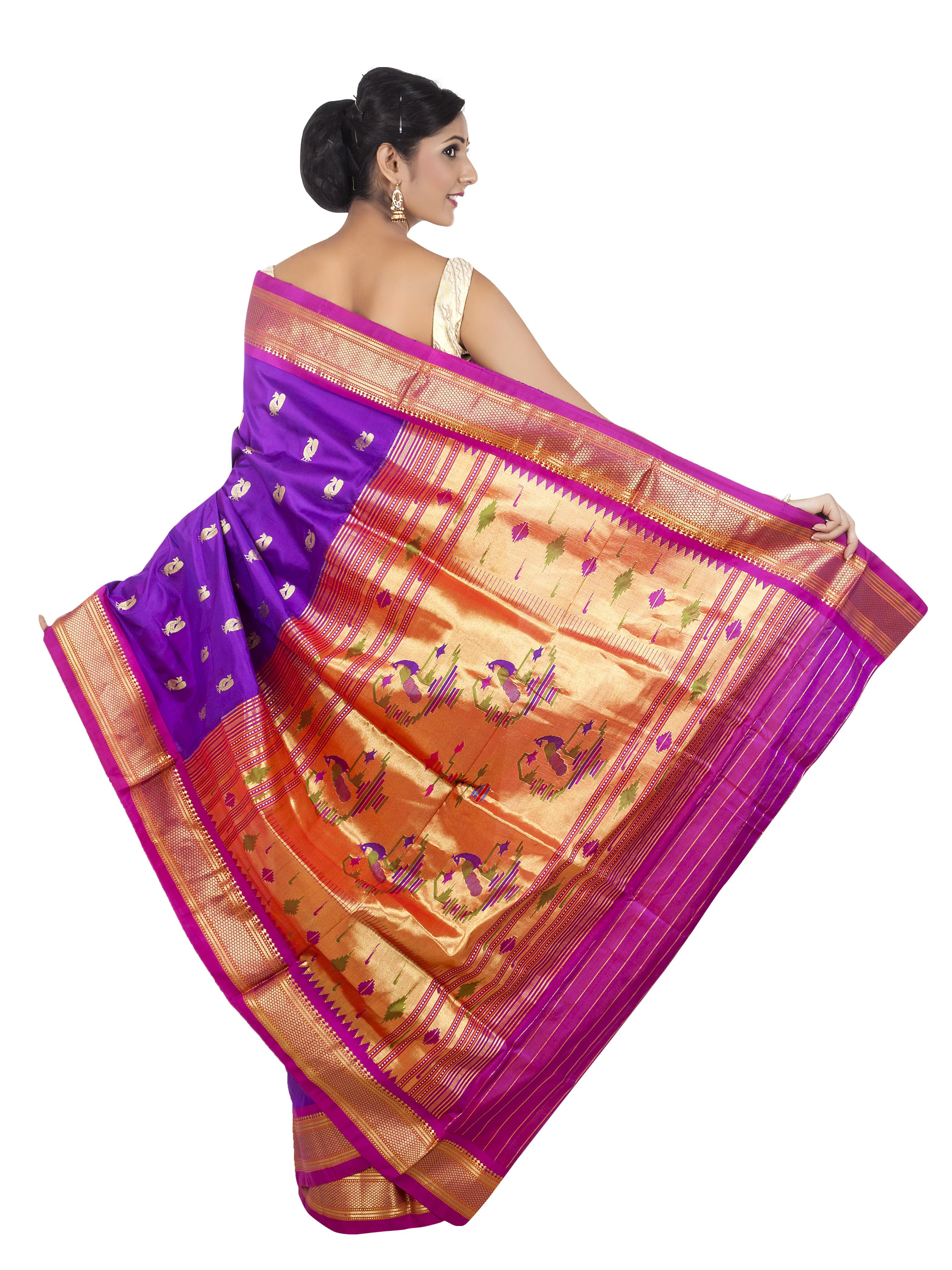 paithani-saree-1050925_Clip