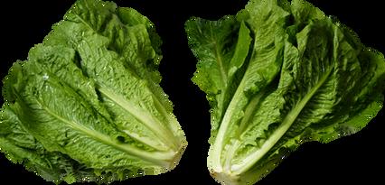 Salad, free PNGs