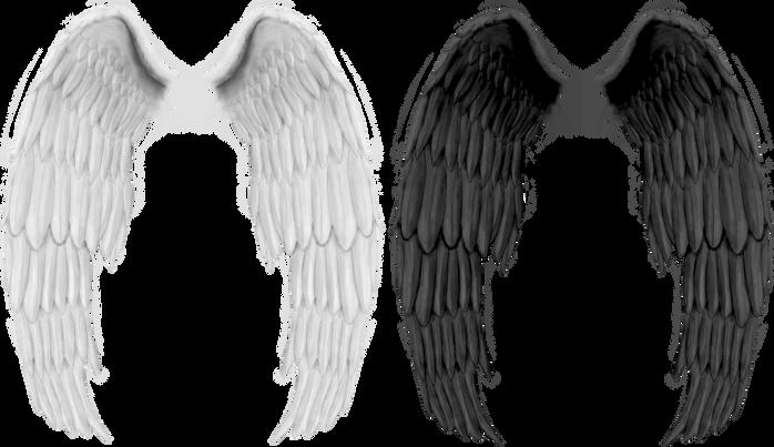 Wings-png-13