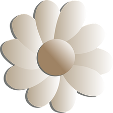 flowers-25615__340.png