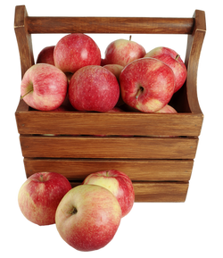 Apples-in-a-Basket-PNG-image.png