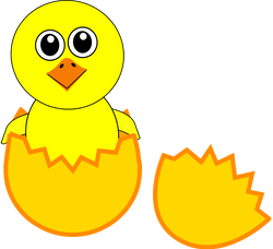 Chick_005_Newborn_Egg_Cartoon
