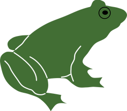 Frog_by_Rones