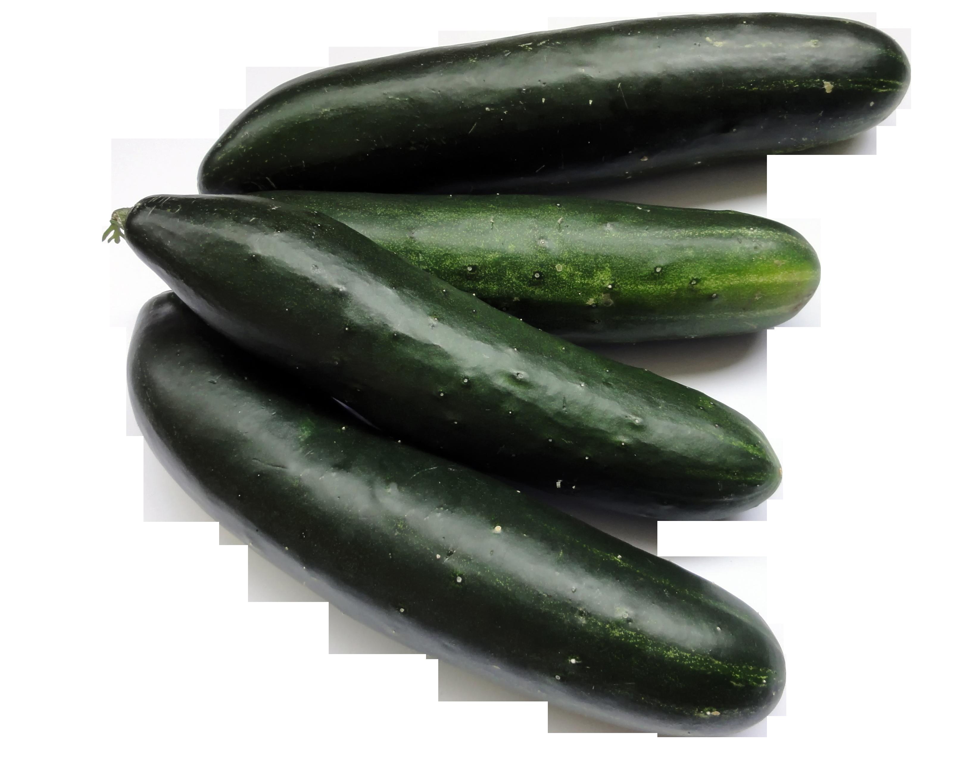 bio-cucumbers-1335527_Clip