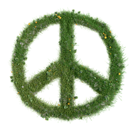 peace-1043093__340.png