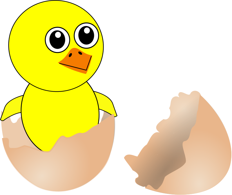 Chick_006_Newborn_Egg_Cartoon