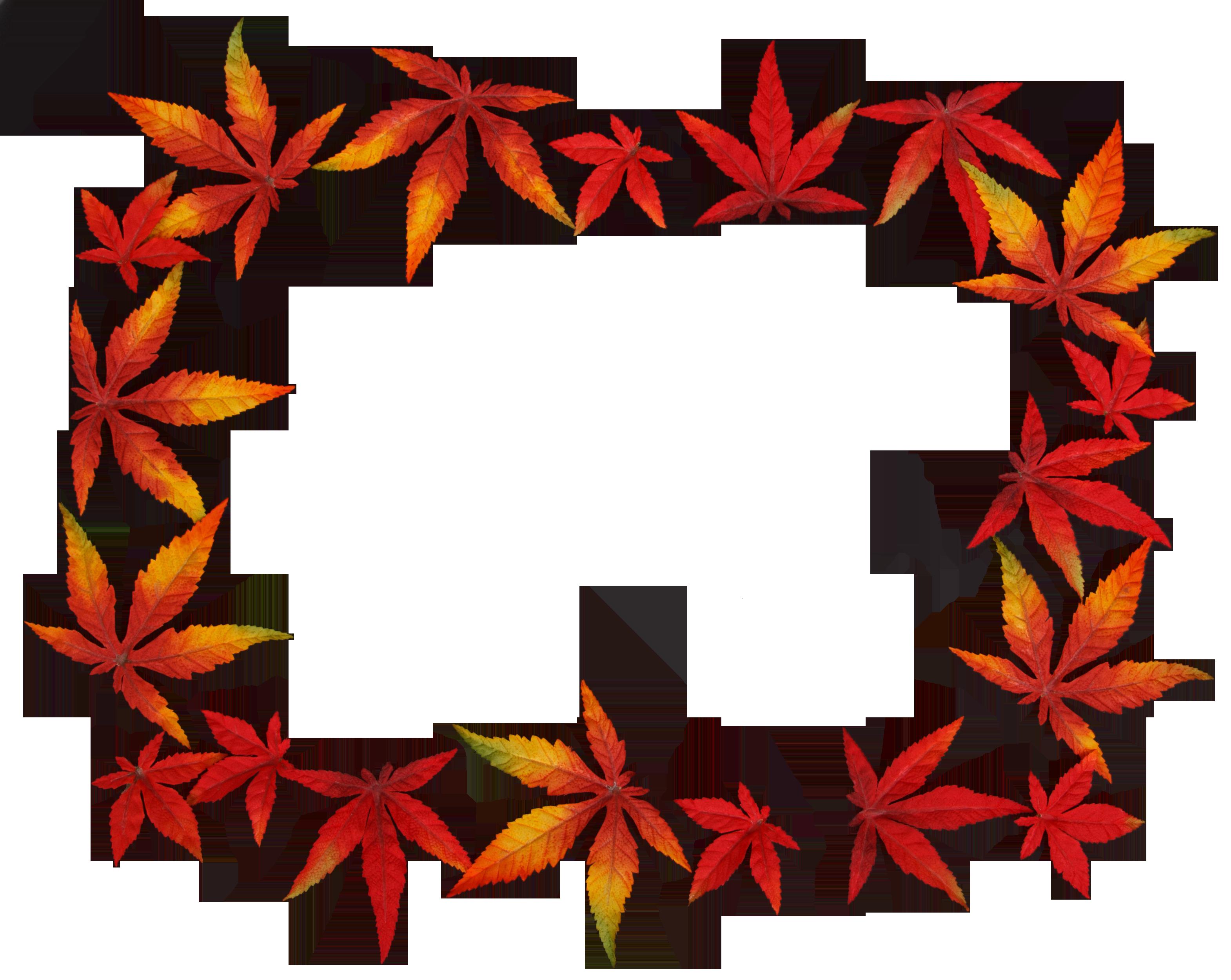 autumn-17016_Clip