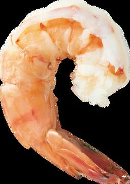 Free shrimp png images.