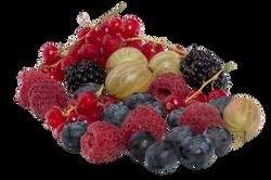 berries-838323_Clip