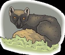 lemur-46409__340.png
