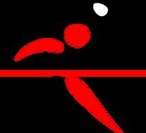 badminton-308952__340.png